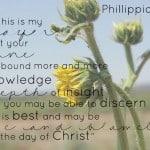 Sunday Quote: Phillippians 1:9