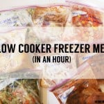 8 Slow Cooker Freezer Meals In an Hour