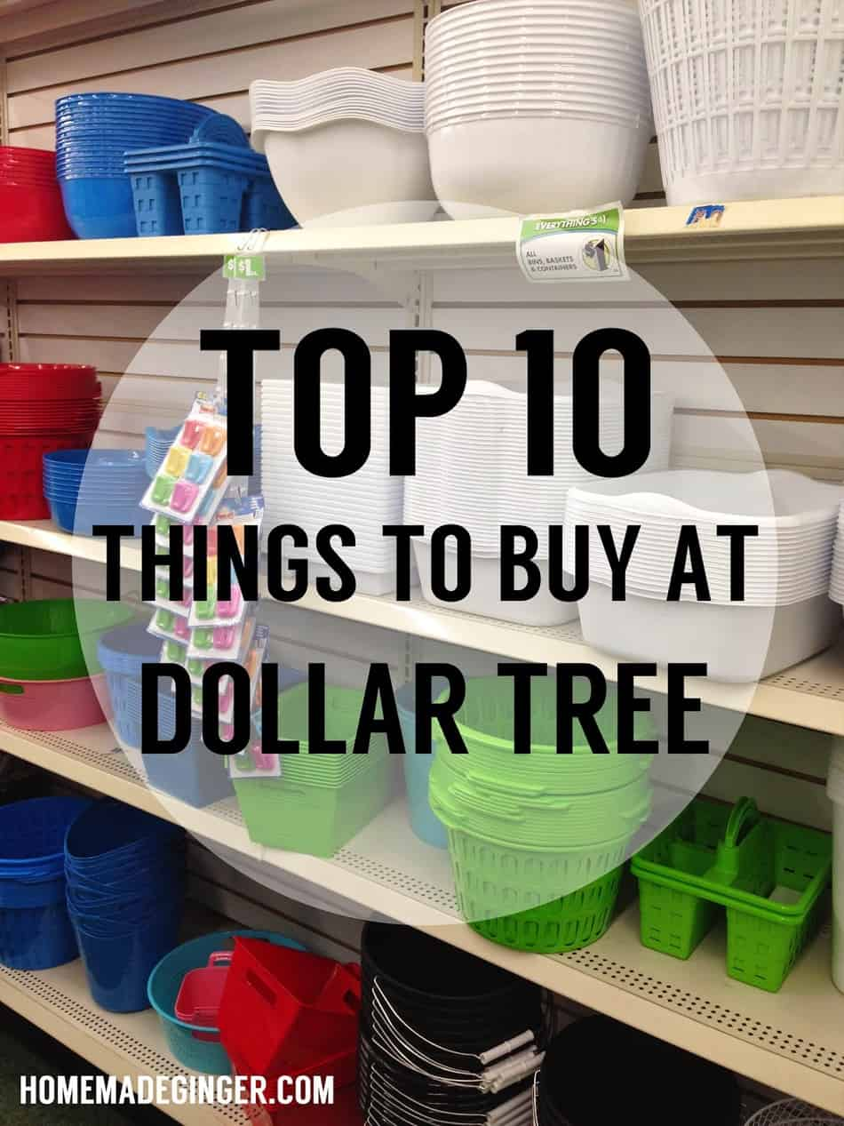Top 10 Things To Buy At Dollar Tree Homemade Ginger
