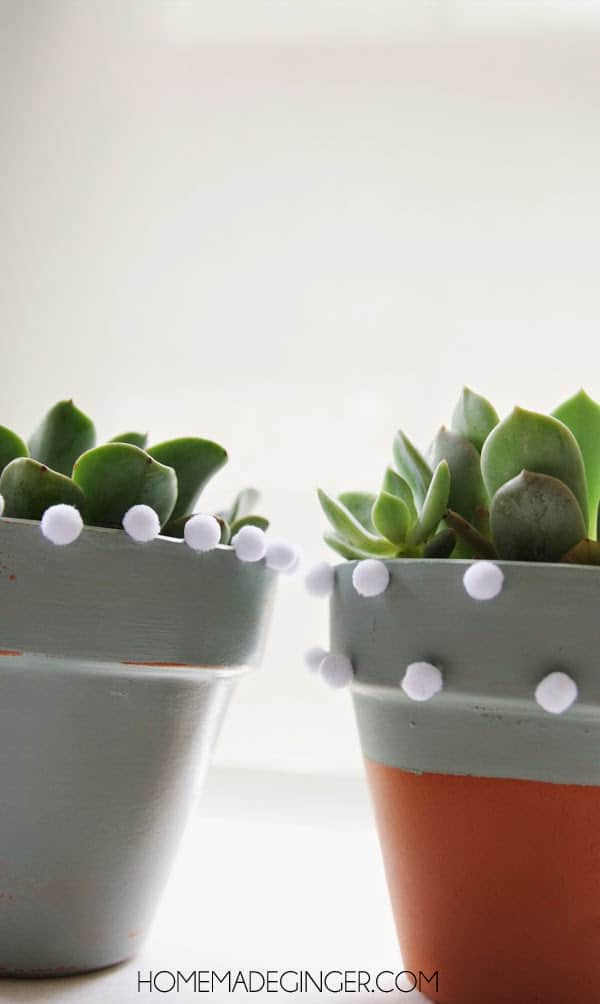 Pom pom planter craft