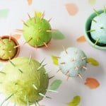 Toothpick Cacti