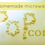 Real Food Day 20: Homemade Microwave Popcorn